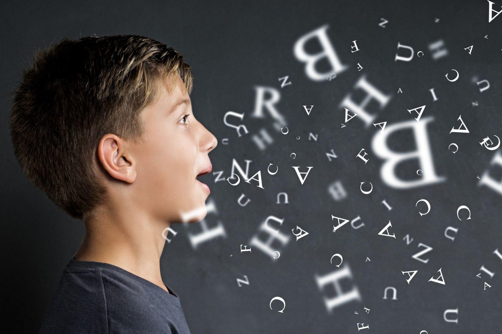 La maîtrise de la langue dans les programmes officiels 2008