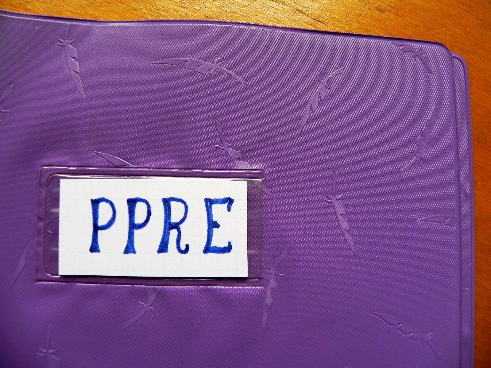 PPRE (Programme Personnalisé de Réussite Educative)
